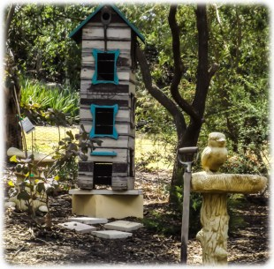 This is near the chook pen and is very popular with the kookaburras