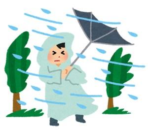 暴風雨 台風