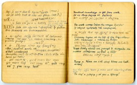 Samples of Irish proverbs taken from Melberg's notebooks.