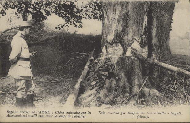 An ancient oak unbowed by German forces
