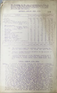 Acts of aggression carried out by British Forces, 17-22 January 1921, p110 (UCDA P7/A/13)