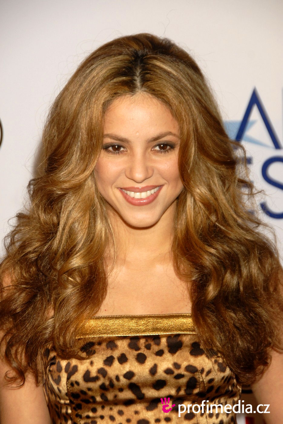 Shakira  frisur zum Ausprobieren in eFrisuren