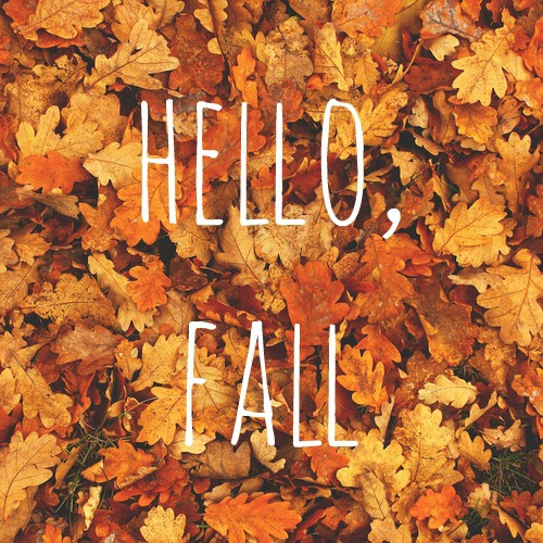 Fall Leaves Falling Wallpaper 8 Early Fall Home Maintenance Tips Up Close Home Inspection