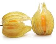 mercado internacional de la uchuva o physalis peruviana