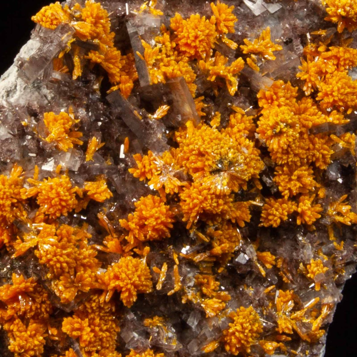 Orpiment and Barite