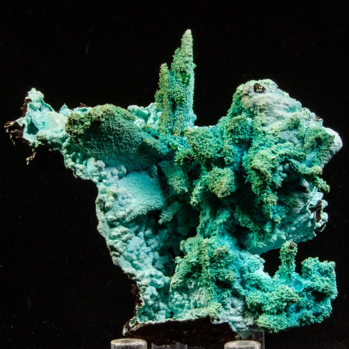 Chrysocolla and Malachite ps. after Azurite