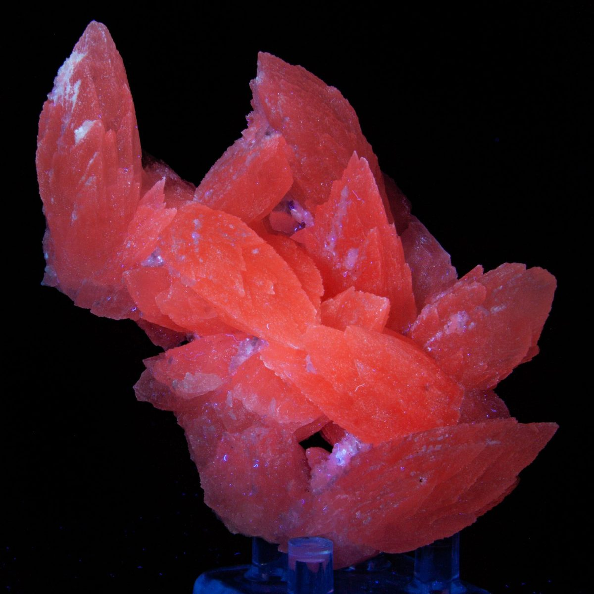 Calcite (Fluorescent)