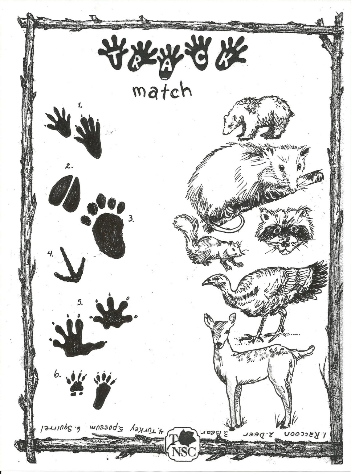 Website animal tracks match