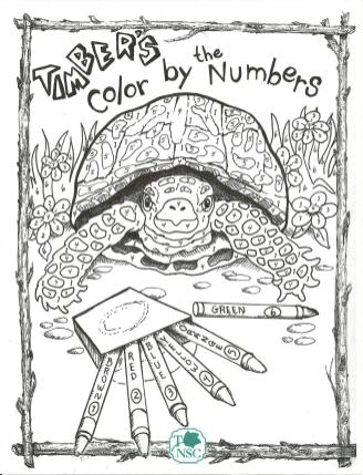 website box turtle coloring page