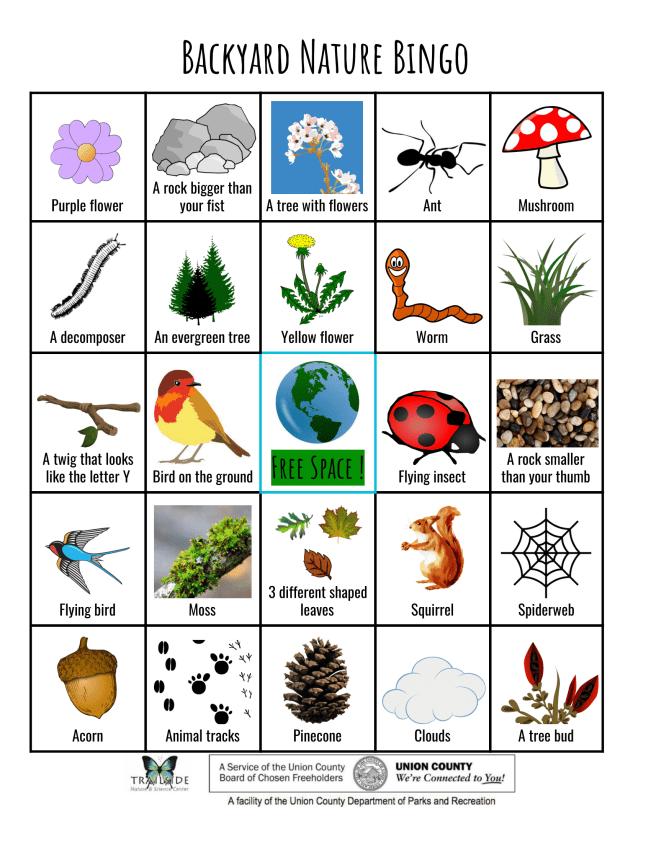 Nature Bingo (3)-1