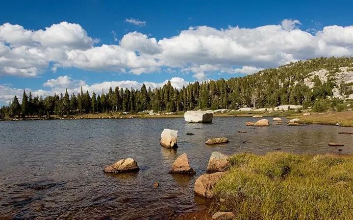 Sierra Nevada Research Station - Yosemite Field Station