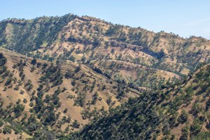 Summer hiking warning for Stebbins Cold Canyon Reserve