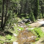 Sierra stream drought