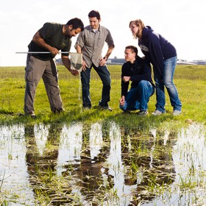 Merced Vernal Pools Grassland Reserve is located adjacent to the UC Merced campus, offering students and faculty a convenient place to conduct field trips and research. Image credit: ©2014 University of California
