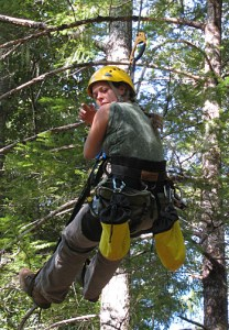 Daniella Rempe collecting Douglas fir samples in the tree canopy at Angelo reserve to measure the stable isotope concentration, which is used to identify the source of the water the tree is using. Image credit: William Dietrich