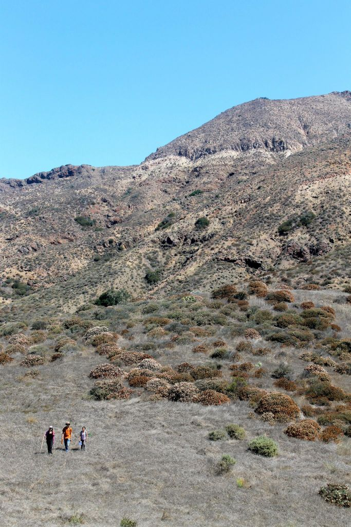 steep mountainside with gullies dotted with chaparral shrubs and three students walking in the foreground