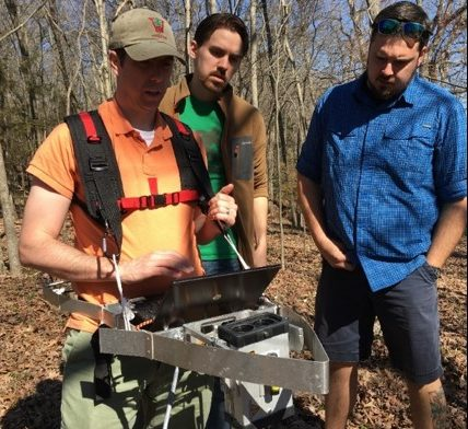 Structural Complexity in Forests Improves Carbon Capture