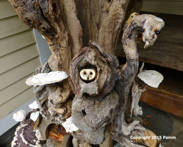 Fungi Uconnladybug'