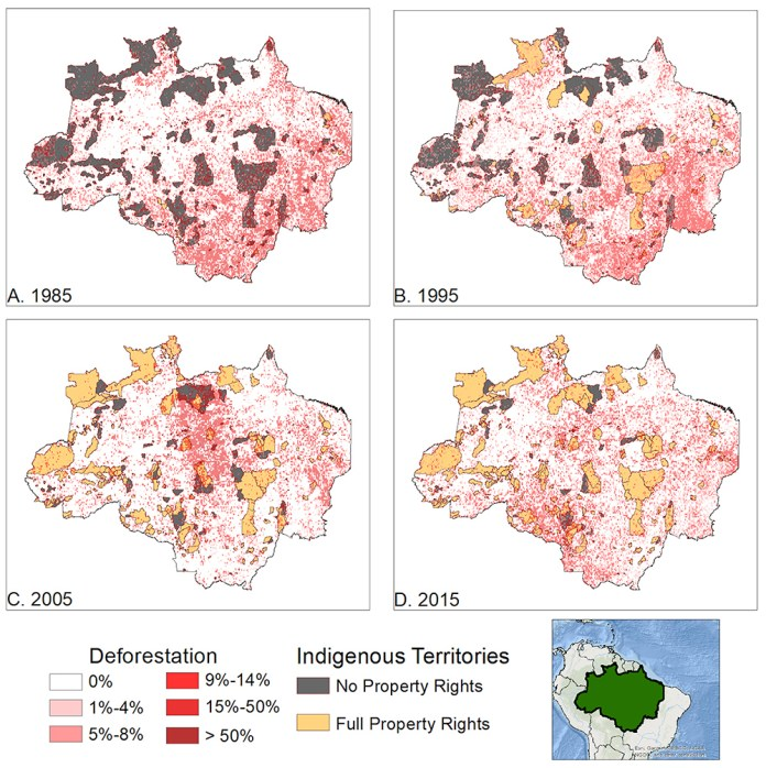 Indigenous Property Rights Protect the Amazon Rainforest