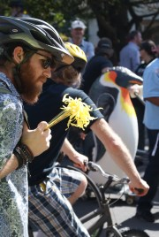 Flowers and penguins during Ecoweek 2015