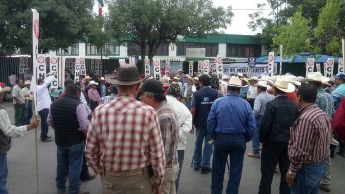 Agricultores se manifiestan en SAGARPA