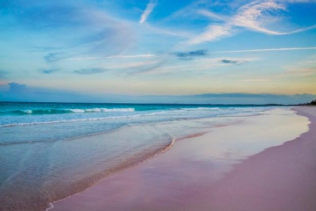 Розовый пляж на острове Харбор, Багамские острова. Фото