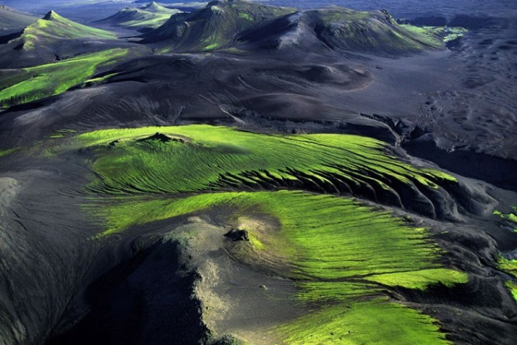 Лавовые поля Исландии. Фото