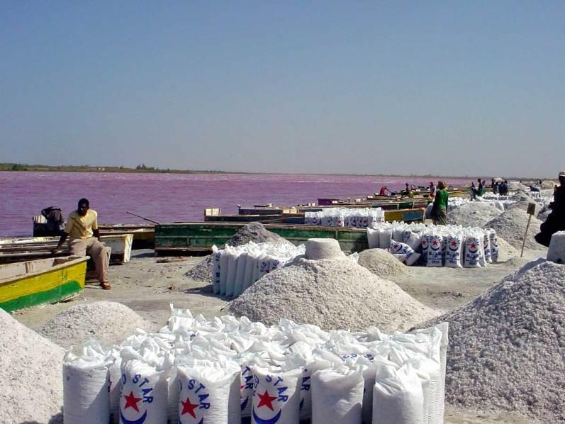 Добыча соли на озеро Ретба в Сенегале. Фото