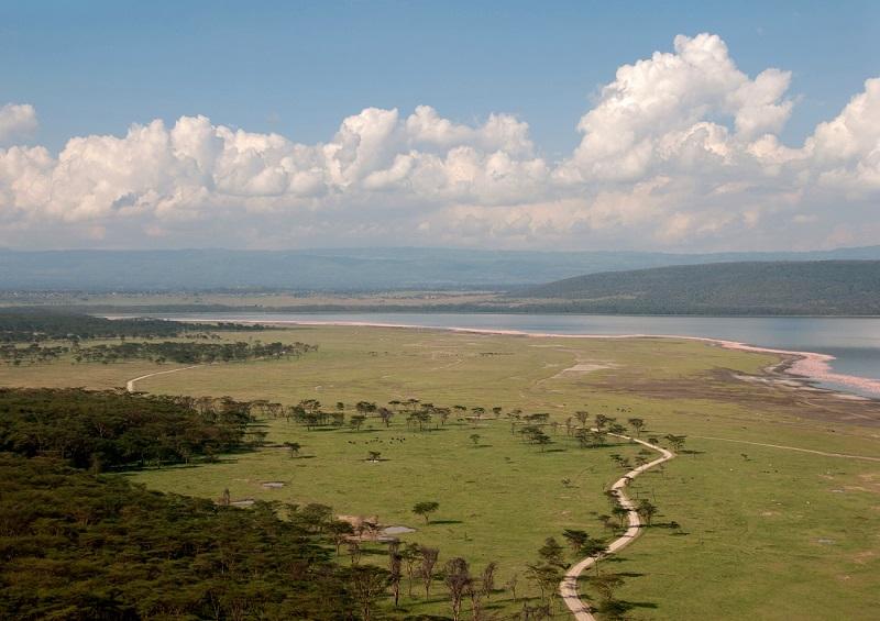 Национальный парк Озеро Накуру в Кении. Фото