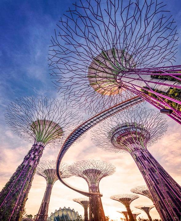 Футуристические сады у залива, Сингапур. Фото
