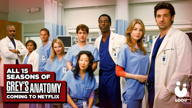 Grey's Anatomy Netflix Series