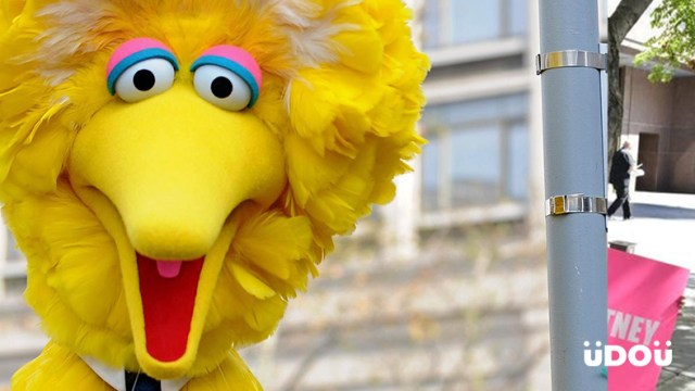 Sesame Street's Big Bird has Different Colored Cousins Globally