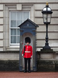 Guardsman at Buckingham Palace