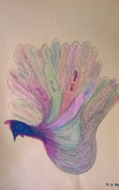 turkey1 (1)