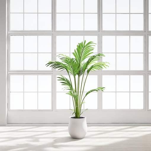 Chocofur_Ketina_Palm