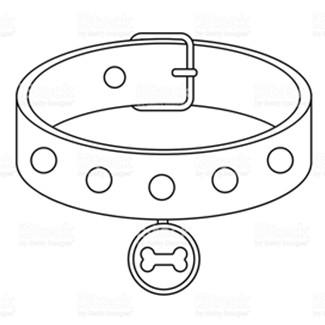 Dog Clothes, Dog Harnesses, Dog Collar & Dog Leashes