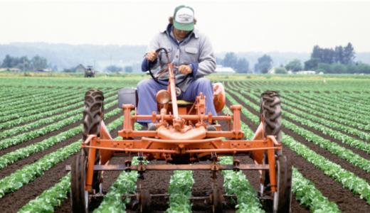 「JAの仕事はきつい?」販売と営農指導員の仕事内容を解説する