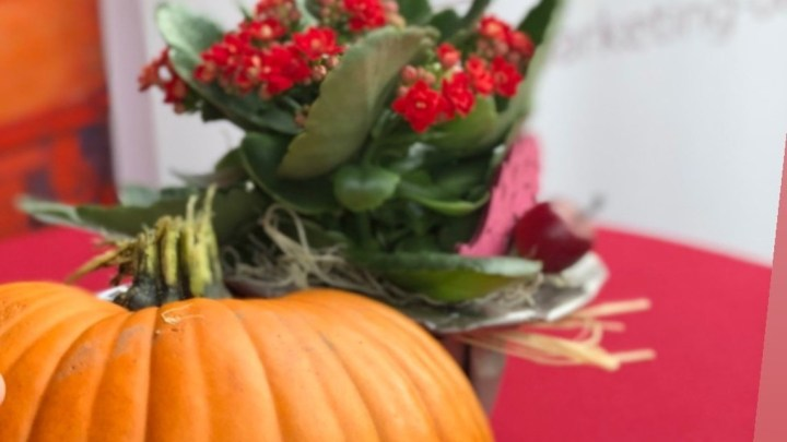 Herbstgefühle in der Innenstadt: Kulturelles Shopping-Erlebnis in Uelzen