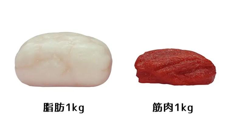 40代のダイエットー2019年5月~2019年10月】食べて痩せる!メンタルも強く!マイナス6kg!人生初のダイエット奮闘記(2020年も継続中) | アールオリジナルアクセサリー