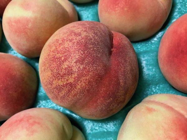 金丸文化農園 桃