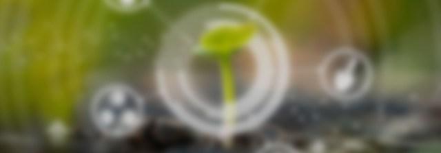 Agricultura digital: herramientas, aplicaciones y beneficios. Casos reales para comprender su impacto (AGR0101)