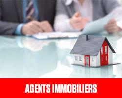 Agents Immobiliers UFE Pérou