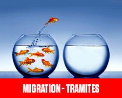 Migration - Tramites UFE Pérou