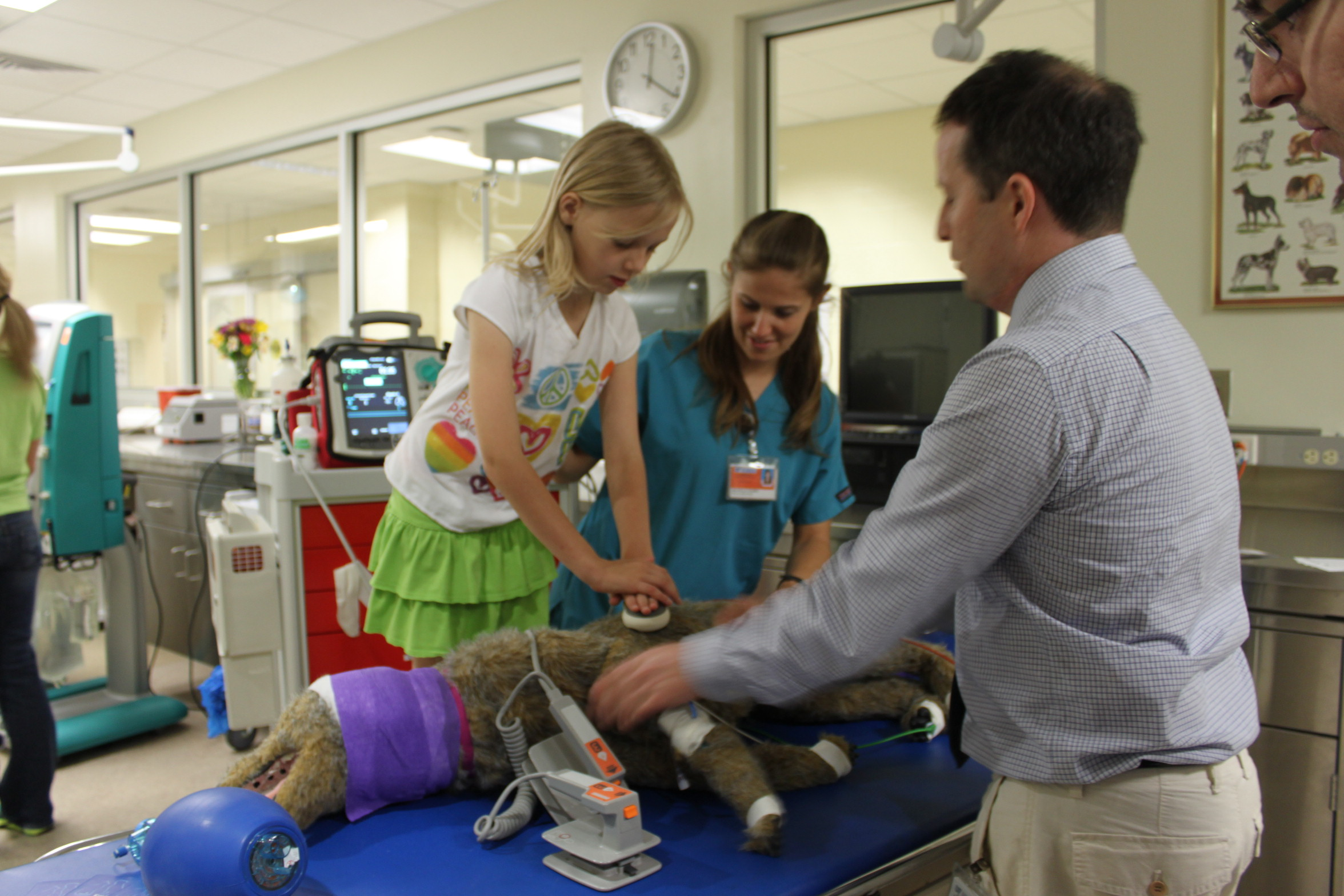UF College of Veterinary Medicine to hold Open House  UF Health University of Florida Health