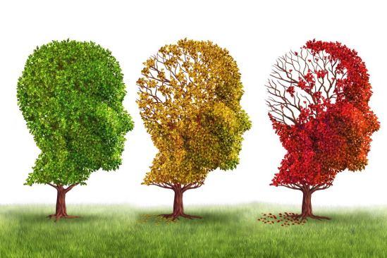 El alzheimer es una enfermedad degenerativa nerviosa.