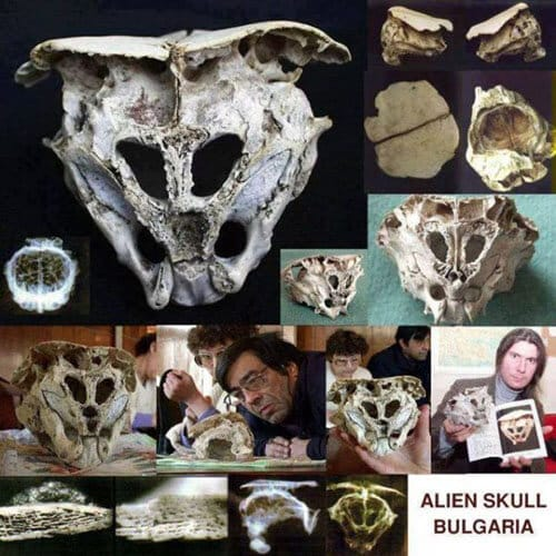 rhodorpe skull alien2