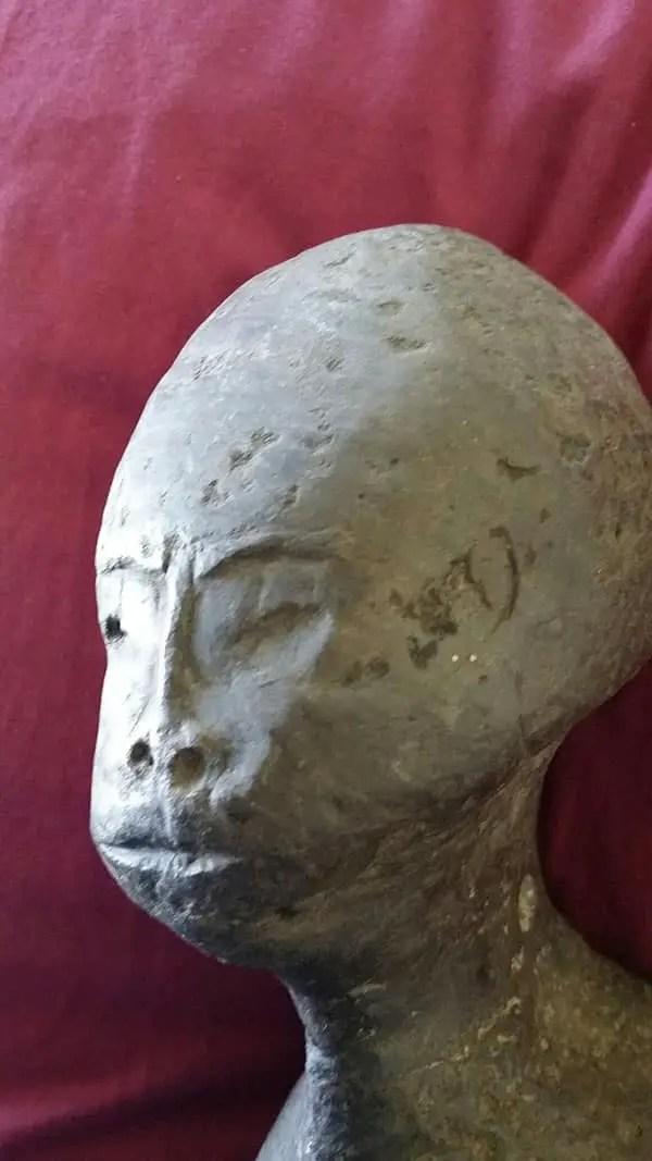 alien hybrid head