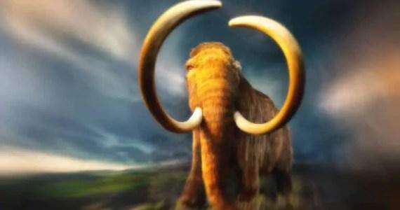 mammoth resurrection