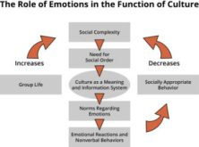 functional adequacy chart