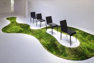 Time of moss in Shangai